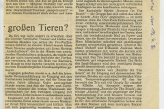 Presse – Rumble On The Beach Archiv - Weser Kurier - 1986