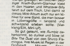 Presse – Rumble On The Beach Archiv – zitty - 1988