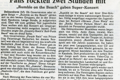 rumble-on-the-beach-weserkurier-88